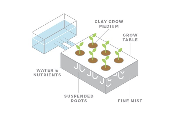 aeroponics_diagram.jpg