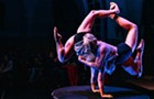 Aloft Circus Arts and Actors Gymnasium bring the circus from their homes to yours