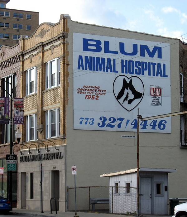best-vet-blum-animal-hospital-900.jpg