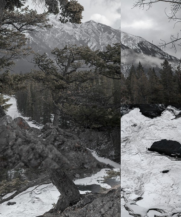 Mountainfield Study (Tree, Rock, and Ice), 2016