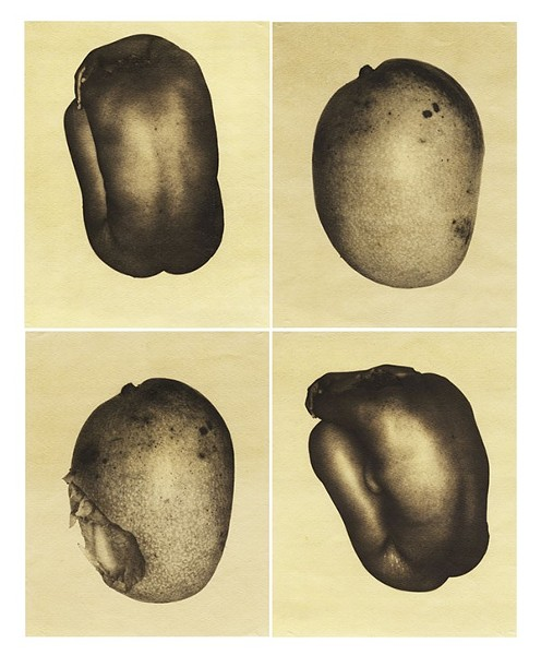 "Shala Miller's Me and the Mango is on display as part of ""De Nue."" - COURTESY THE ARTIST"