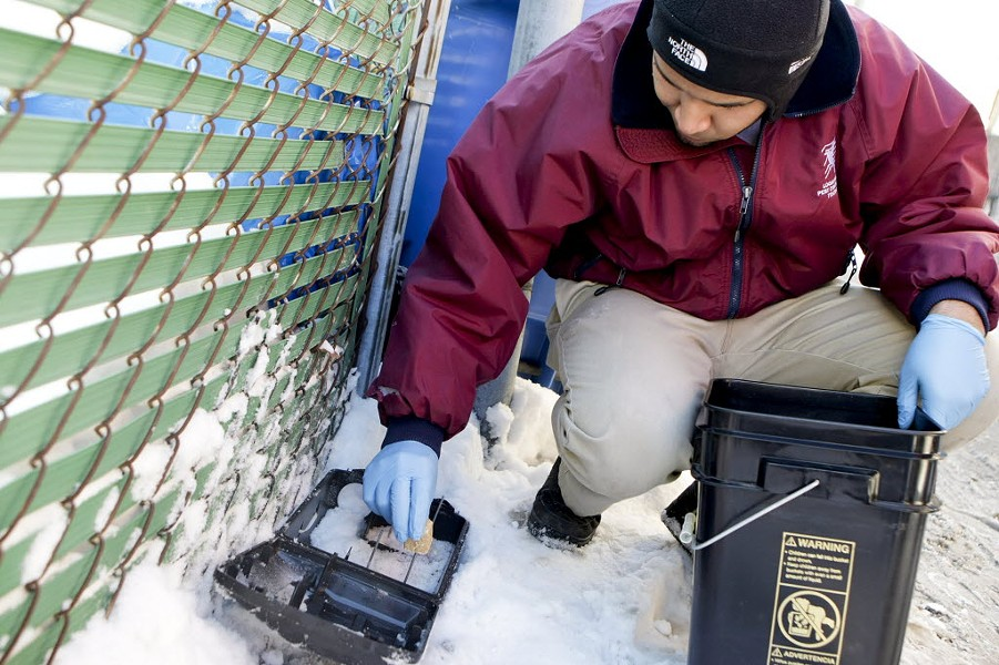 Diego Ortiz of Logan Square Pest Control refills bait in a rat trap in a Chicago alley in January 2014. - MICHAEL JARECKI/FOR SUN-TIMES MEDIA