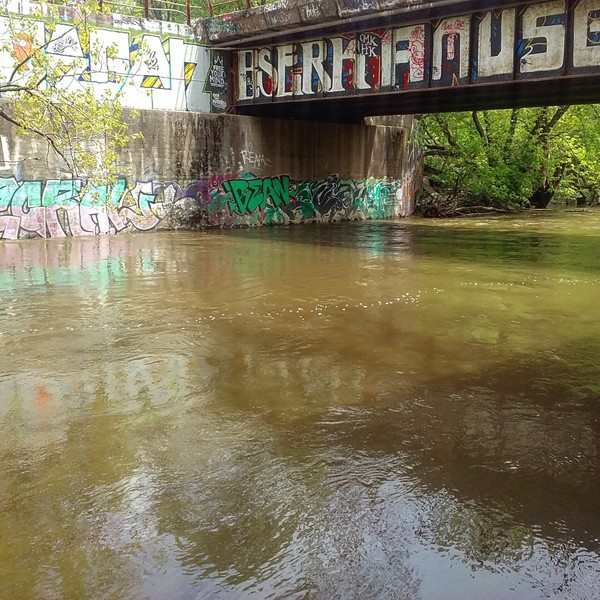 The north branch of the Chicago River flows though LaBagh Woods. - VINCE CERASANI