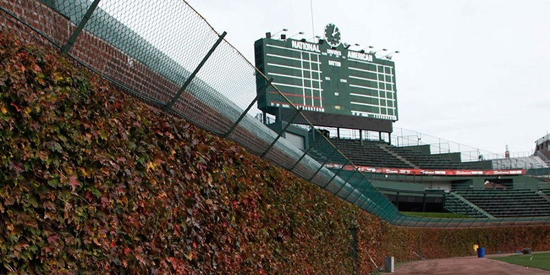Scatter my ashes at Wrigley Field