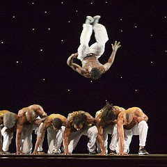 After ten years, the Chicago Dancing Festival will no longer take place.