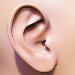"""""""Dicks don't fit in ear canals, and blasting semen into someone's ear could cause a nasty ear infection."""""""