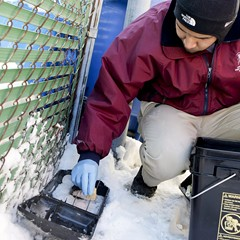 Diego Ortiz of Logan Square Pest Control refills bait in a rat trap in a Chicago alley in January 2014.