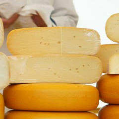 At the Say Cheese Fest restaurants vie for the coveted 'Big Cheese' prize