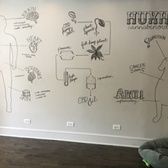 "A mural at HuxHemp CBD Apothecary gives customers a lesson in ""Cannabinoids 101."""