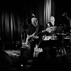 Prog bassist Tony Levin and jazz pianist Pete Levin team up as the Levin Brothers
