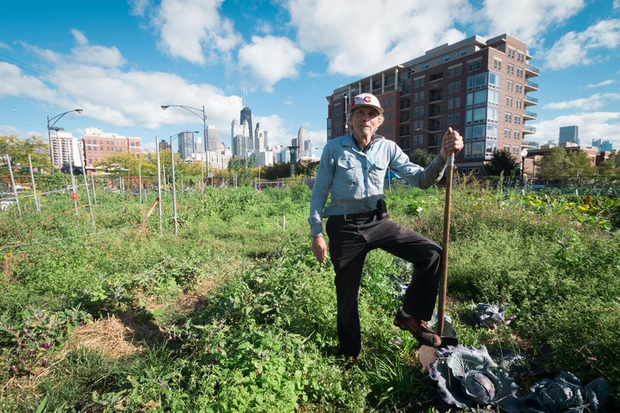 """It was very hard to pay a living wage and pay the mortgage on the property,"" City Farm founder Ken Dunn says of his previous attempt to own land. - LOGAN JAVAGE"