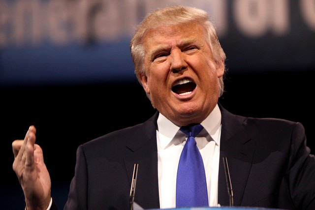 Donald Trump and his hair are up in the polls. - GAGE SKIDMORE