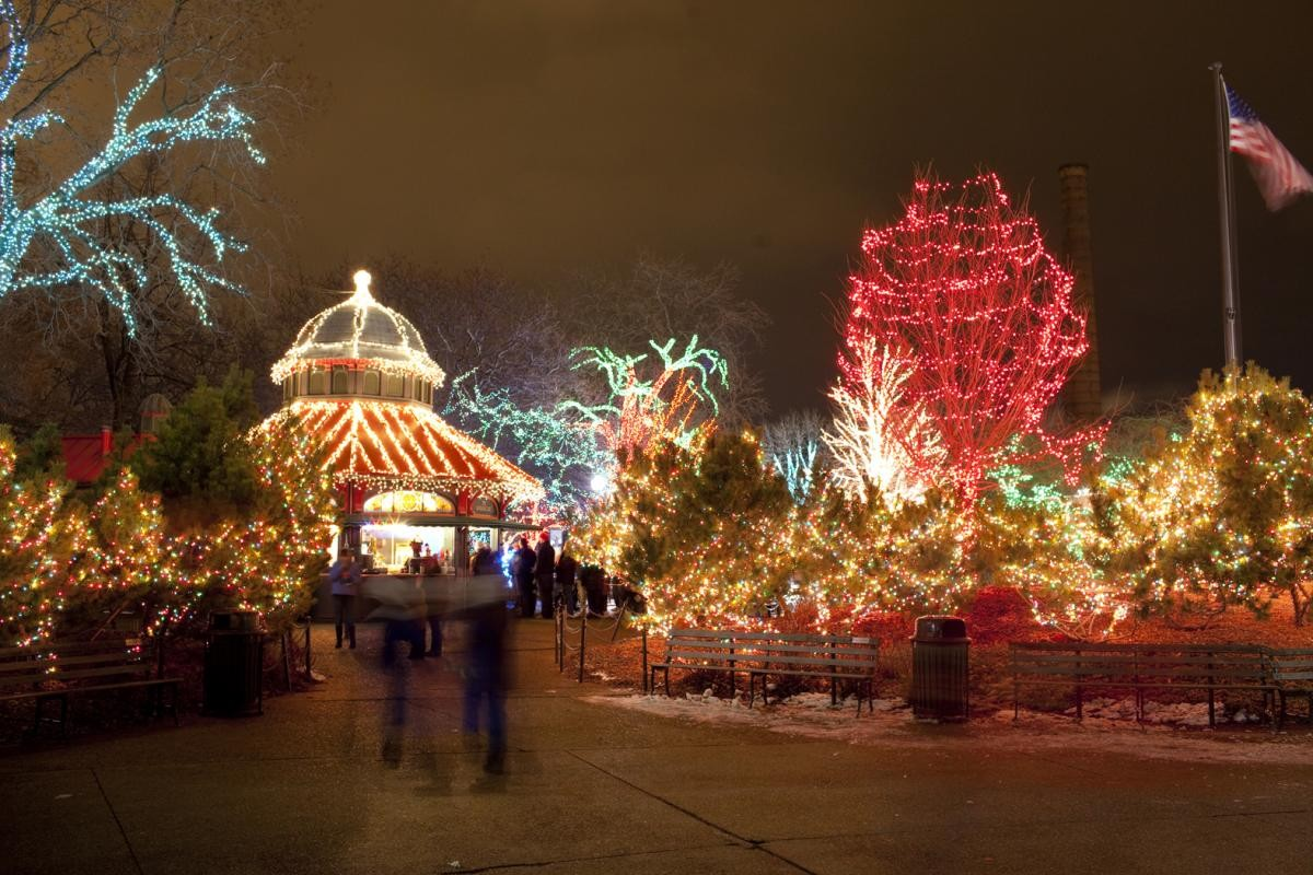 Caroling At Cloud Gate Zoolights And More Things To Do