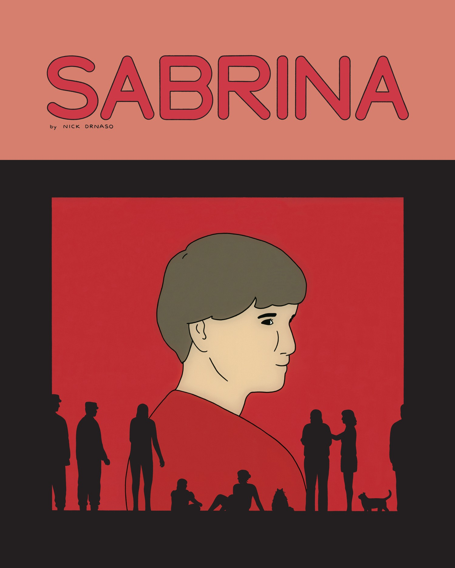 Image result for sabrina drnaso book cover