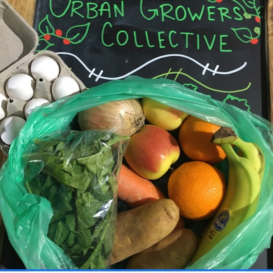 Eliminating barriers to urban farming and increasing purchasing from BIPOC growers and producers for institutions are among the priorities of the food equity council. - COURTESY URBAN GROWERS COLLECTIVE