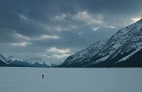 Emmanuel Lubezki is the real auteur of <i>The Revenant</i>