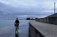 After wiping out, a cyclist wants the Park District to address the green menace along the lakeshore
