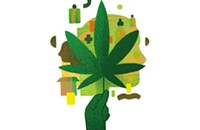Best place to buy CBD products