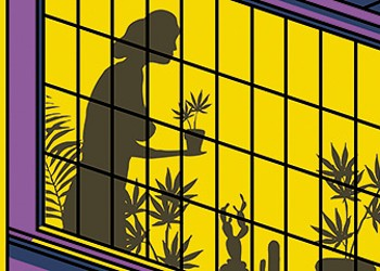 Why can't Illinois patients grow their ownweed?