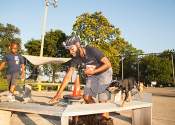 Development threatens one of the south side's only dog-friendly areas