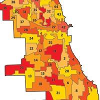 Chicago's 50 wards—the jigsaw version