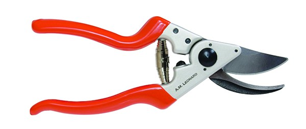 A. M. Leonard pruning shears from The Phantom Gardner in Rhinebeck.