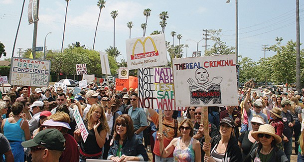 A rally in Venice, Califronia, on May 25, part of the nationwide March Against Monsanto. - LIZANNE E.WEBB / PLANET WAVES