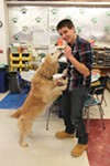 A student at Green Chimneys plays with Blueberry, a service dog.