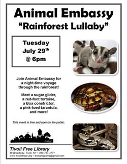 239ec11e_animal_embassy_rainforest_lullaby.jpg