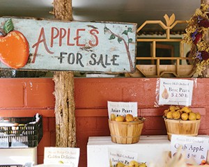 Apples for sale at Stone Ridge Orchards in Stone Ridge.