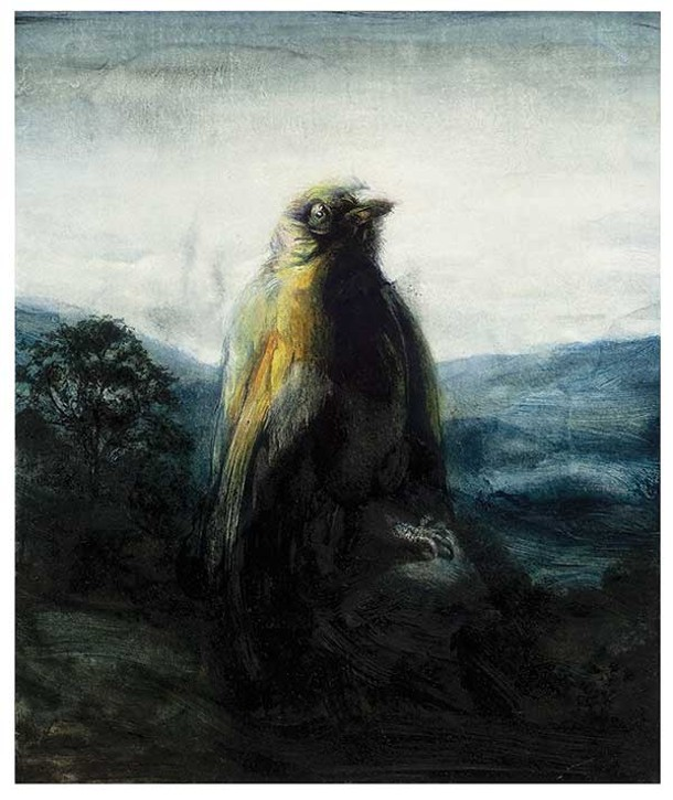 Astonished Looking Bird in the Landscape by Frank Hutter