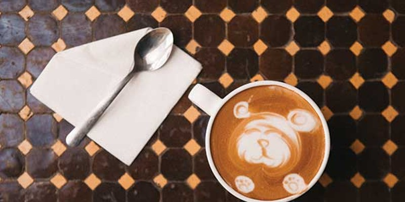 Spill the Beans Bear-shaped latte art at Bank Square Coffeehouse in Beacon. Thomas Smith