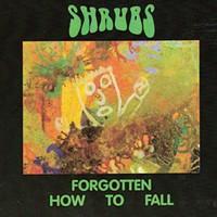 CD Review: Shrubs