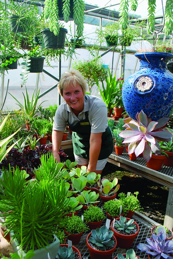 Cheryl Hearty among the succulents that are hot now. - LARRY DECKER