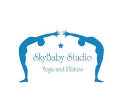 a24ffdf0_skybaby-logo.jpg