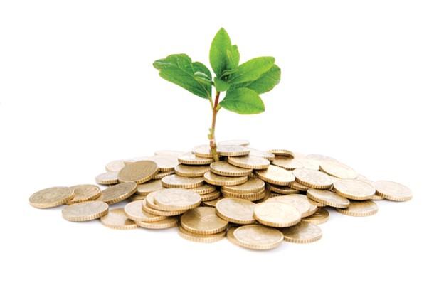 moneyandinvest--cointree.jpg