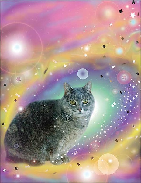 Cosmic Chrono Cat, Becky Todd, Digital Construction, 2013. Cover design by Jaclyn Murray.