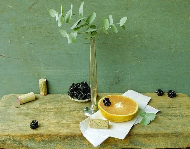 "David Halliday, Grapefruit & Eucalyptus, archival pigment print, 14"" x 18"", 2007"