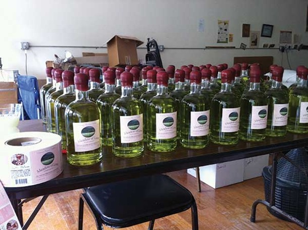 Delaware Phoenix Distillery's Meadow of Love absinthe on the bottling line.