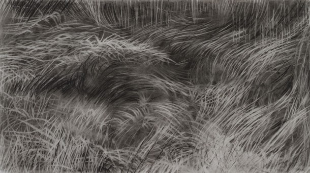 Douglas Wirls, Terrain (study) 5, charcoal on drafting film, 5 x 8 inches