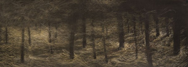 Douglass Wirls, Forest Floor 3, pastel and sumi ink on paper, 12 X 32 inches