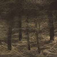 """""""Leaf in a Landscape"""" and """"Wood"""" at Imogen Holloway Gallery"""