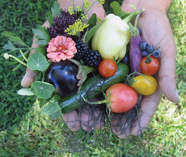 Fresh-picked fruits, vegetables, and flowers from Kelder's Farm in Kerhonkson.