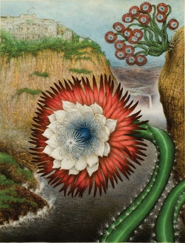 """From Scott Serrano's """"Wallaceana"""" Tri Colored Cereus, part of the """"Great Prentenders"""" exhibit at Carrie Haddad in Hudson."""