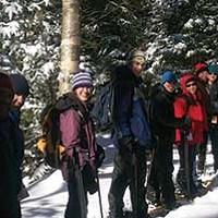 Halcott Mountain Wild Forest Hike