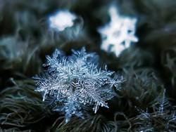 c04f5216_snowflake_1.jpg