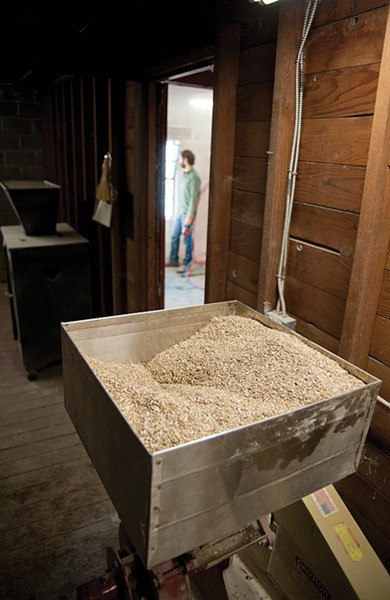 Hudson Valley rye grain awaits milling. - ROY GUMPEL