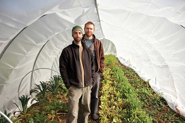 Ken Greene and Doug Muller in their hoop house. - ROY GUMPEL