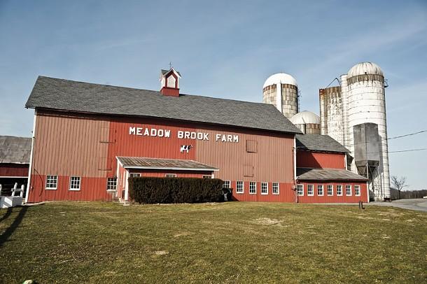 Meadow Brook Farm - DAVID MORRIS CUNNINGHAM