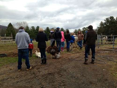 Mike Stura leading a tour at the Woodstock Farm Animal Sanctuary